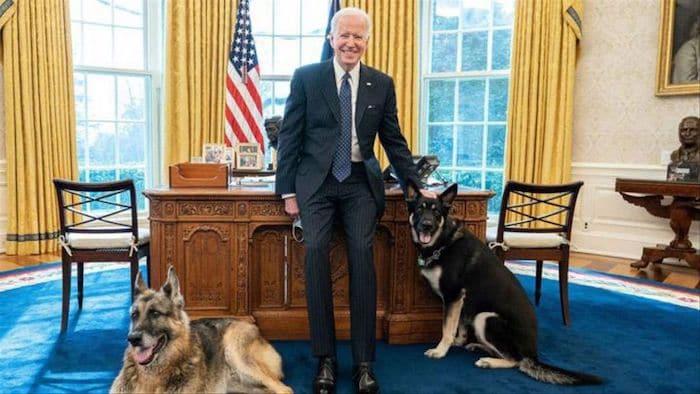 El presidente de los Estados Unidos, Joe Biden, anunció que este sábado falleció Champ, uno de sus perros