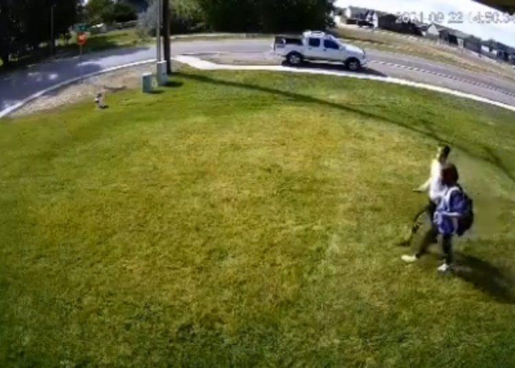 Ideó un método para que ya no pisaran su patio y se hizo viral