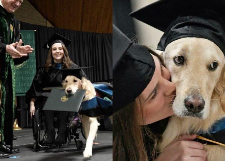 Este perrito se 'graduó' de maestría junto con su dueña