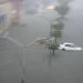 Las fotografías y videos subidos a redes sociales por usuarios dejan ver que algunas de las avenidas y zonas principales de la capital yucateca están completamente inundadas.
